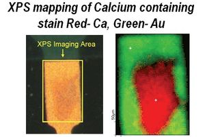 XPS Mapping of Calcium Containing Stain Red- Ca, Green- Au